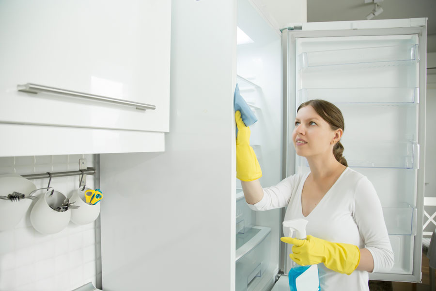 Limpieza-del-hogar-el-escorial-limpiar-nevera-cocina