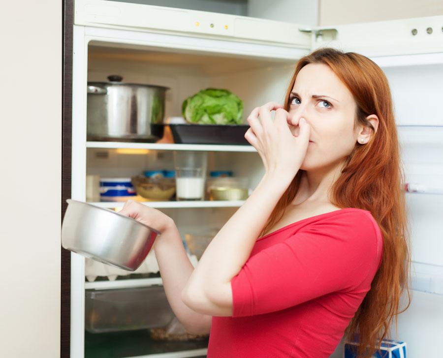Servicio-Domestico-por-horas-el-escorial-limpiar-nevera-cocina