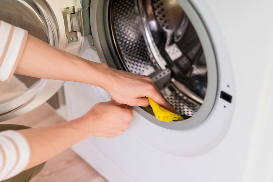 Mantenimiento del hogar limpieza de electrodomésticos