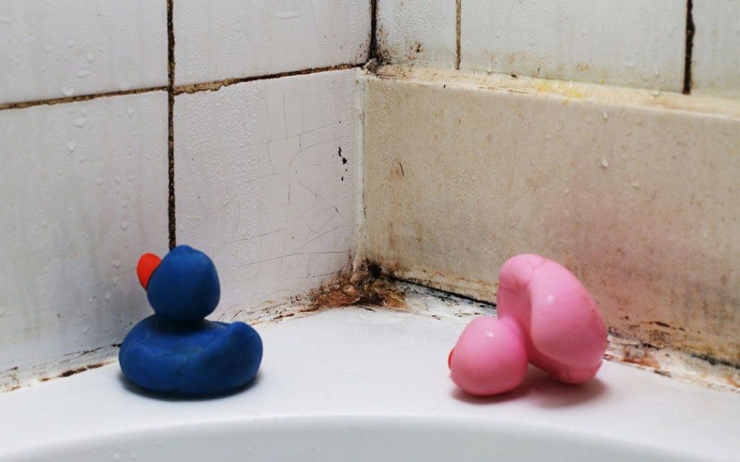 ¿Tienes moho en tu baño? Limpia el moho de tu baño